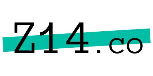 Z14 Digital Service provider Logo